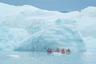 Арктический регион менее холодный— за счет теплых водных течений— и практически вдвое меньше — туда, помимо Северного полюса, входят льды и воды Северного Ледовитого океана до берегов Северной Америки и Евразии, в то время как Антарктика с Южным полюсом охватывает земли Антарктиды, прилегающие острова и холодные воды Атлантического, Индийского и Тихого океанов.  <br></br> И если на севере активно ведется хозяйственная деятельность и разведка ресурсов, то на юге разрешена лишь научная деятельность — свои научные станции там разместили полсотни государств.  <br></br> Ледяные просторы до конца не изучены и не освоены, поэтому путешествие в Арктику и Антарктику— это особая авантюра.
