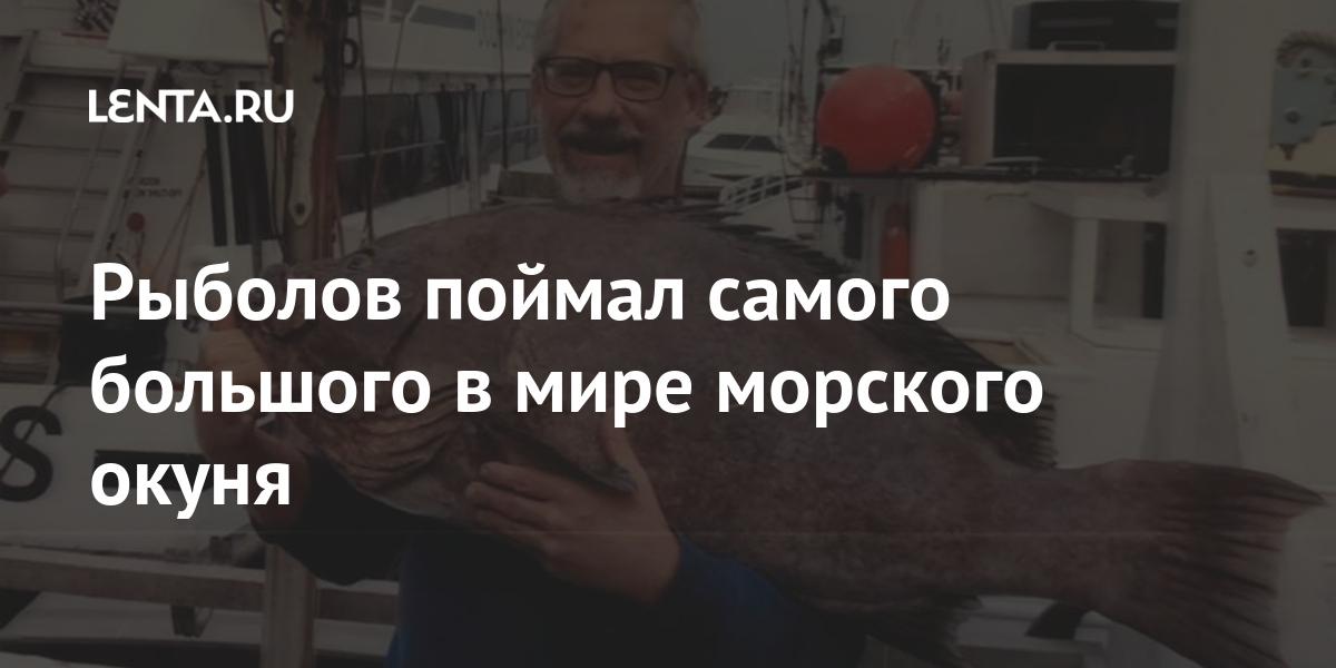 Рыбак поймал самого большого в мире морского окуня: Достижения: Из жизни: Lenta.ru