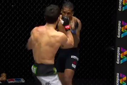 Российский боец MMA нокаутировал непобежденного бразильца