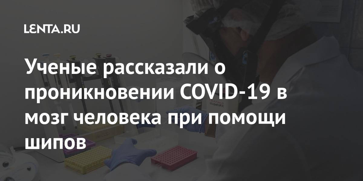 Наука Наука и техника: Lenta.ru
