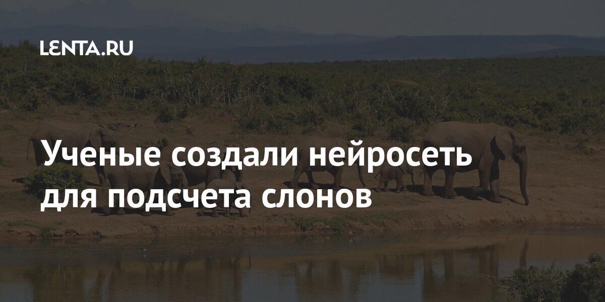 Софт: Наука и техника: Lenta.ru