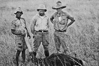 Перестрелки, погони и малярия: как лучшие шпионы мира гонялись за птичьими перьями