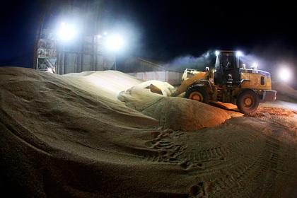 Россия оставит Египет без пшеницы