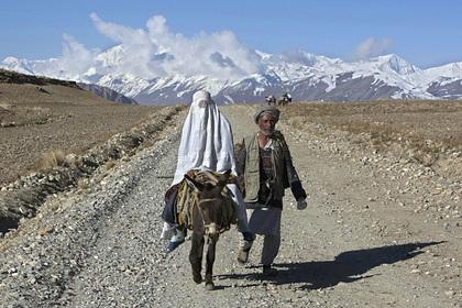 Террористы решили брать меньше жен и экономить на свадьбах