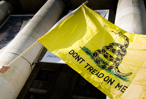 Гадсденовский флаг, один из символов либертарианства