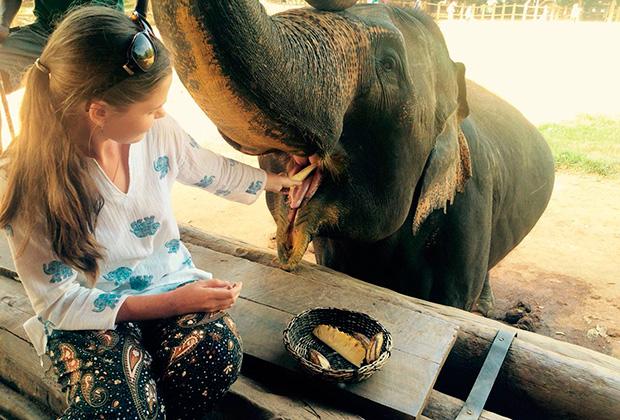 Приют для слонов Пиннавела