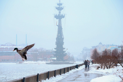Врач назвала россиянам способы борьбы с сонливостью теплой зимой