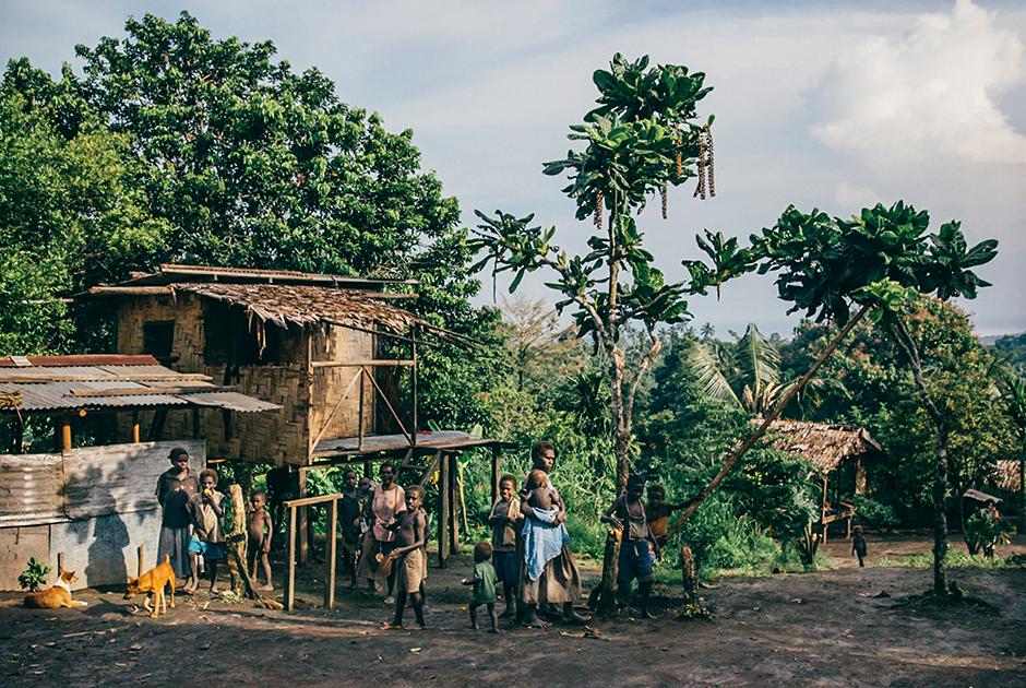 Традиционные дома жителей Бугенвиля в деревне Васкувири