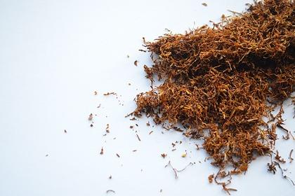 В России запретили продажу табачных стиков в интернете