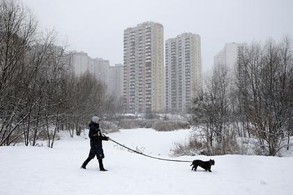 На Украине из-за шторма без света остались почти две сотни населенных пунктов