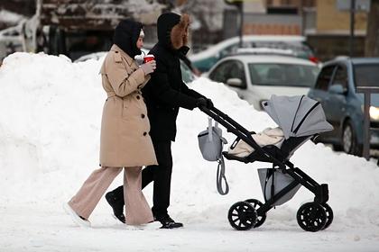 Раскрыто число российских семей с общим бюджетом