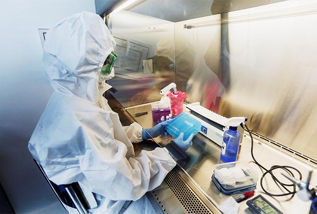Исследование предположительно нового штамма коронавируса в одной из лабораторий Мексики