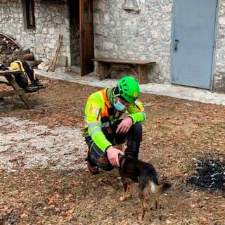 Спасатель и собака-герой Эш