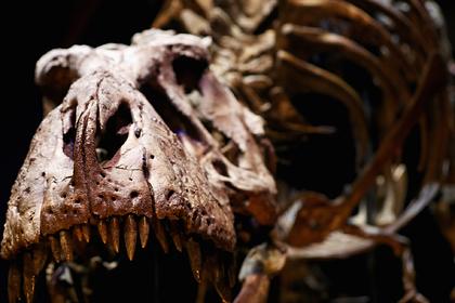 Названа окончательная причина гибели динозавров