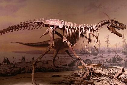 Решена загадка гигантских динозавров-хищников