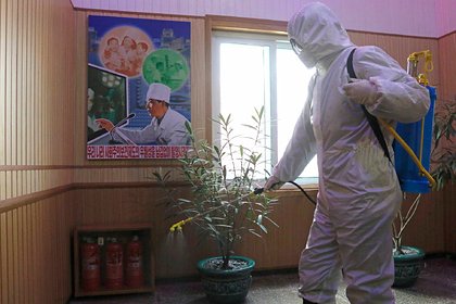 Российский дипломат рассказал о карантине в Северной Корее