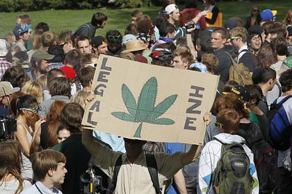 В американском штате разрешат марихуану в развлекательных целях