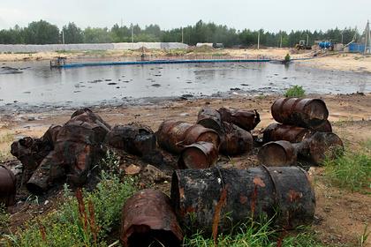 Власти решили не наказывать российские компании за вред природе
