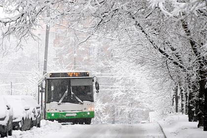 Российскую школьницу высадили из автобуса на мороз из-за одного рубля