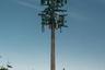 """Исик Кайя (Ik Kaya) обращает внимание на то, что с 1980-х годов вышки сотовой связи начали резко заполнять городские пейзажи. Эти столбы, которые иногда маскируют под обычные деревья, помогают спецслужбам собирать данные о пользователях смартфонов. Он называет вышки «неуклюжими секретными агентами, прячущимися за кустами». <br> <br> «На изображениях серии """"Вторая природа"""" показаны артефакты цифровой эпохи, которые стали частью ландшафта Южной Калифорнии. Эти замаскированные вышки связи можно охарактеризовать как """"общественное предпочтение"""" фальшивой эстетики уродливой реальности», — отметил Кайя."""