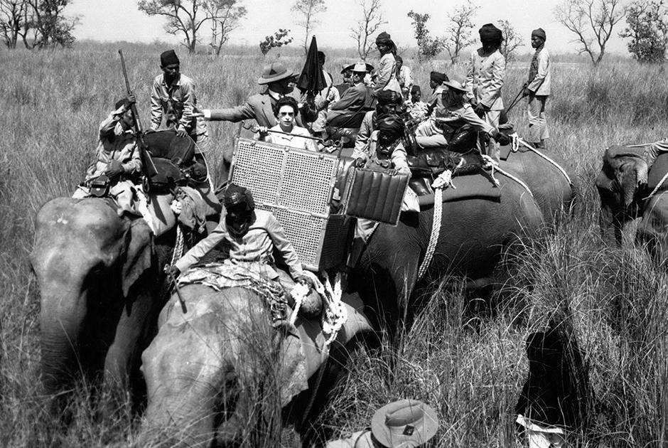 В 1950-е годы Британия еще не рассталась со своими колониями, поэтому Елизавета II и Филипп проводили немало времени в разъездах. В Канаде принц встречался с индейскими вождями и отплясывал в джинсах и клетчатой рубашке. В Австралии бестактно интересовался у аборигенов, перестали ли они бросаться копьями. В Индии по приглашению джайпурского махараджи взгромоздился на слона и поехал на тигриную охоту. Подстреленную им тигрицу освежевали, законсервировали и отправили в Великобританию, о чем Филипп скоро пожалел: соотечественники сочли убийство редкого хищника непозволительной жестокостью.