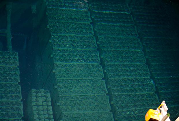 Бассейн с отработавшим ядерным топливом