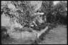 Могила немецкого ефрейтора Теодора Лониена, погибшего 7 июня. Лафоо, Франция, 1940 год.