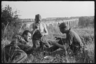 Обед немецких солдат солдатским сухим пайком в поле. Франция, 1940 год.