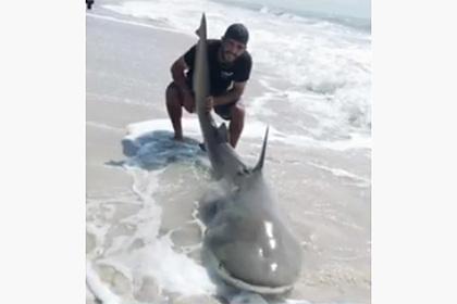 Рыбаки поймали на удочку двухметровую смертельно опасную акулу