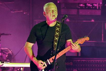 Лидера группы Pink Floyd втянули в конфликт соседей из-за дерева