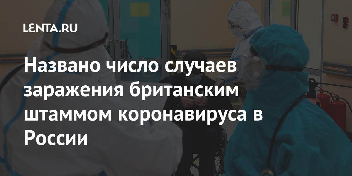 share 97968f39b7f33ddd1192ab648958429d Названо число случаев заражения британским штаммом коронавируса в России