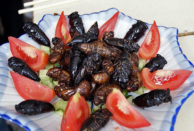 Жареные цикады