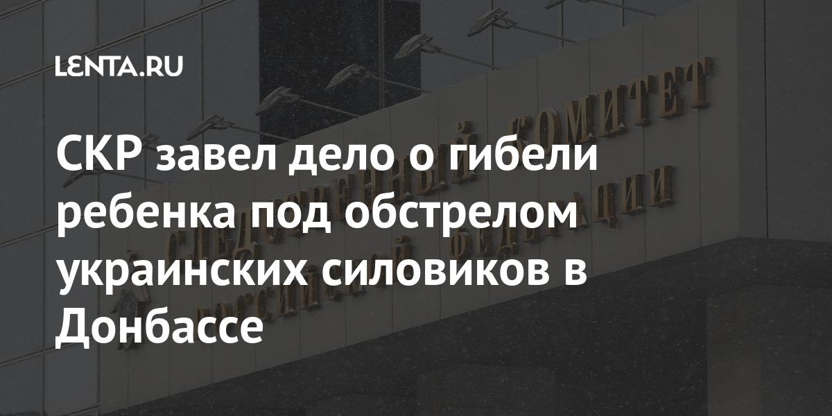 share 4e1b2ff9cd78a29d3a5f1b4add457bdb СКР завел дело о гибели ребенка под обстрелом украинских силовиков в Донбассе