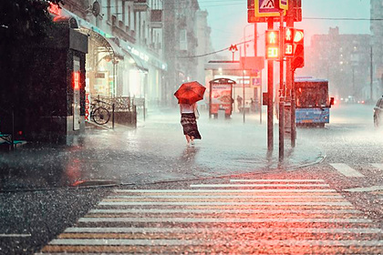 Описаны главные последствия изменения климата в России: Общество: Россия: Lenta.ru