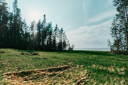 Рекультивация на участке берегового пересечения в России