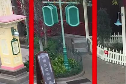 Диснейленды уличили в маскировании неприглядных объектов специальной краской