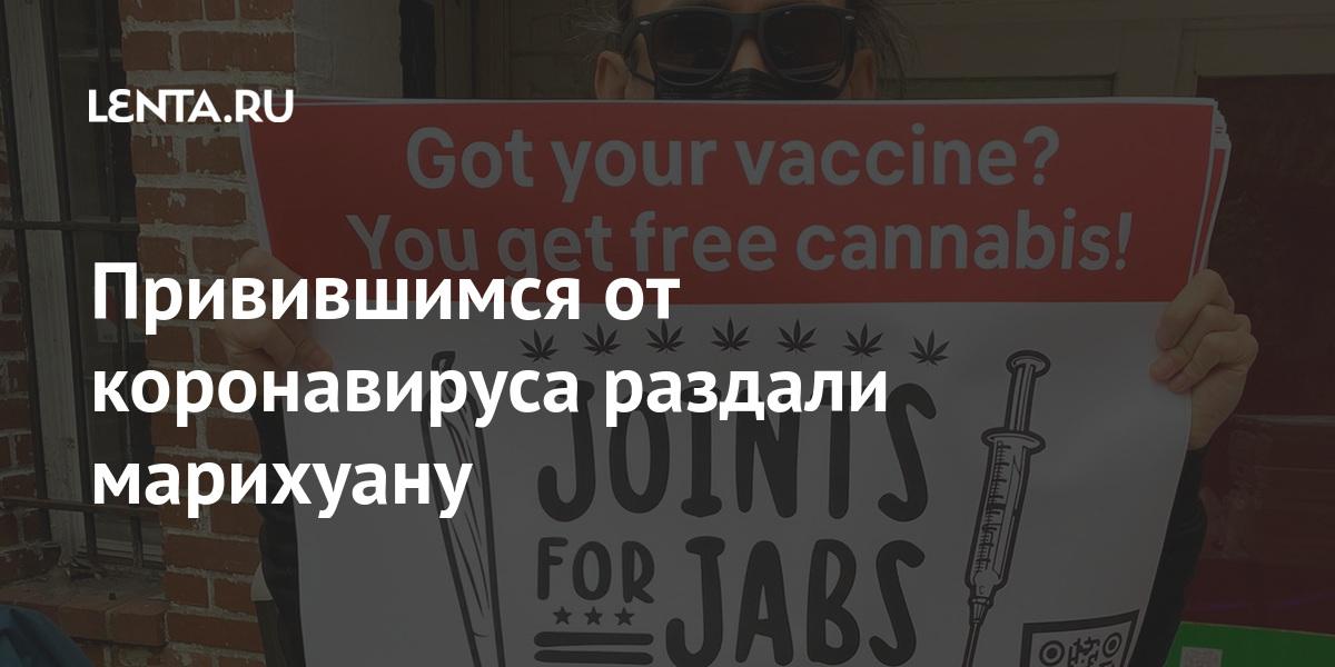Привившимся от коронавируса раздали марихуану: Общество: Мир: Lenta.ru