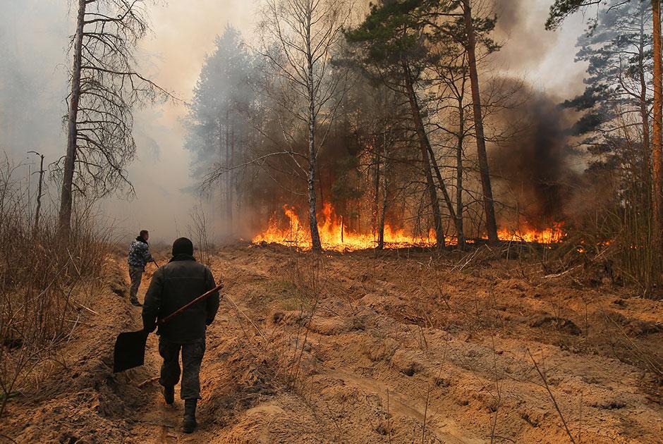 Пожары в зоне отчуждения Чернобыльской АЭС