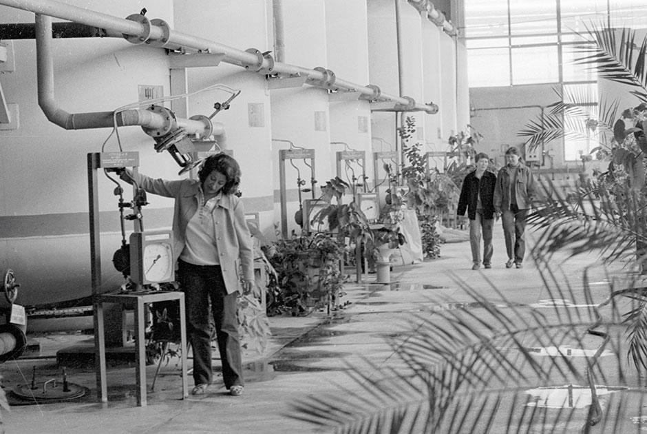 Процедура охлаждения реактора на Чернобыльской атомной электростанции, 1985 год