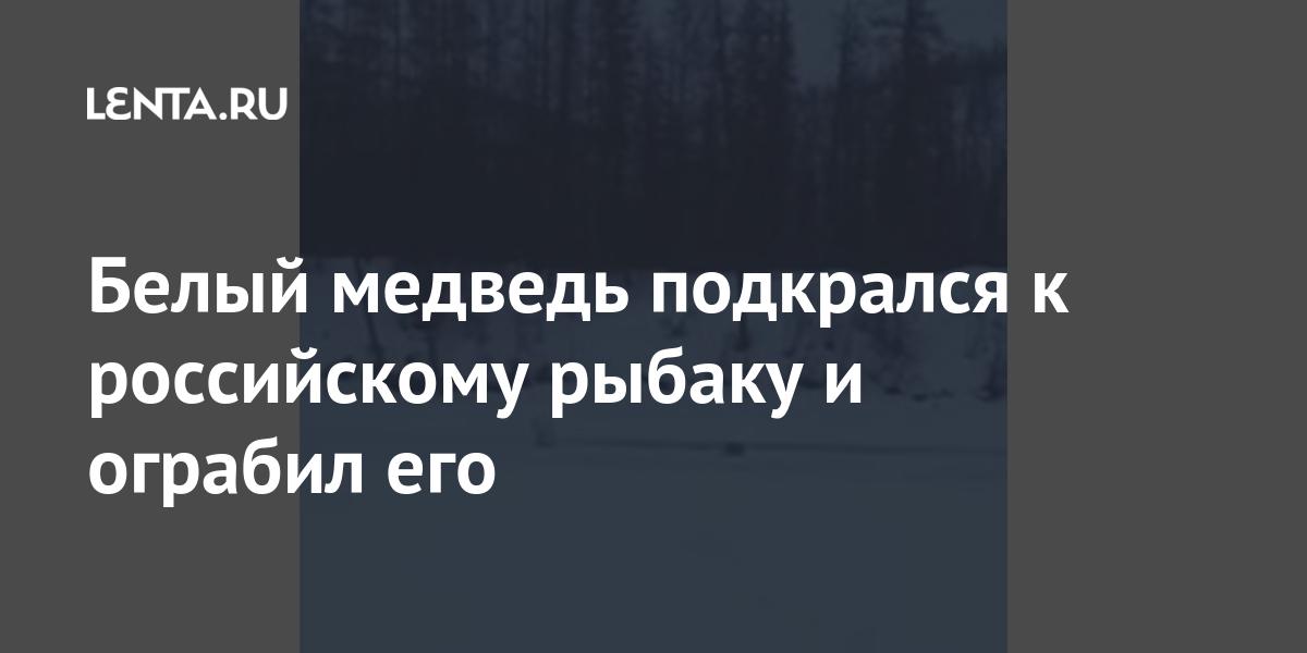 Белый медведь подкрался к российскому рыбаку и ограбил его