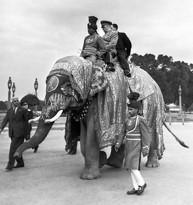 Георгий Жуков на слоне в Дели, 25 января 1957 года