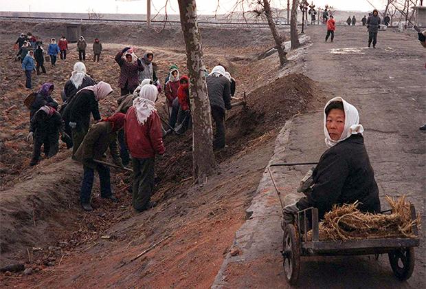 Рабочие на полях в провинции Хванхэ-Намдо