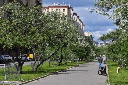 Россиянам пообещали потепление в День Победы