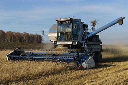 В CША спрогнозировали России один из лучших урожаев пшеницы в истории