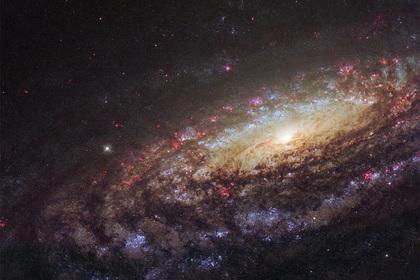 Подтвержден взрыв звезды вблизи Земли