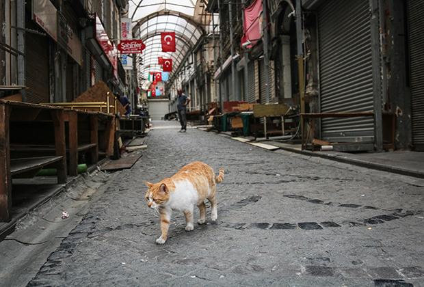 Пустая торговая улица в Стамбуле