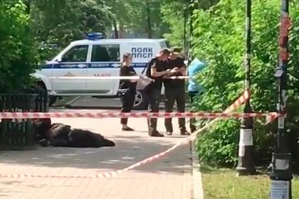 Раскрыта личность напавшего с ножом на троих человек россиянина