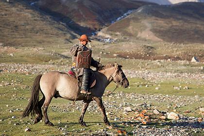 Жители самых холодных районов России проскачут на лошадях из Якутска в Москву