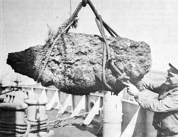 Крупнейший в истории кусок амбры