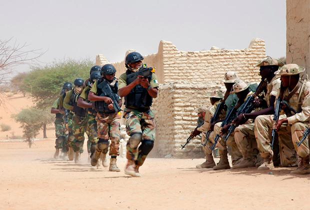 Совместные учения спецназа из Нигерии и Чада с советниками из США, 2015 год